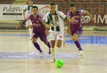 Photo of El Palma Futsal empata davant el Córdoba Patrimonio a dos