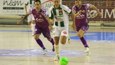 Córdoba Patrimonio - Palma Futsal // Palma Futsal